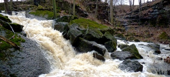 January 2016 Upper Louth West and East Falls