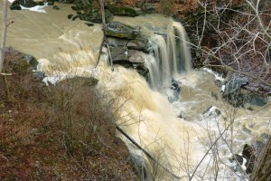 6-lower-beamer-falls-june-2017
