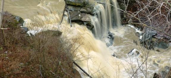 June 2017 Lower Beamer Falls