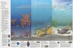 Ancient-Seas-panel-thumb