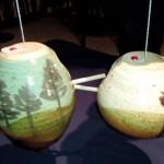 pottery4